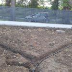 Jak Założyć Trawnik