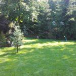 Trawnik Podlewanie